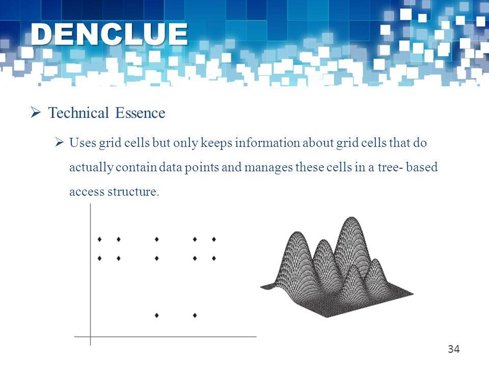 DENCLUE Technical Essence