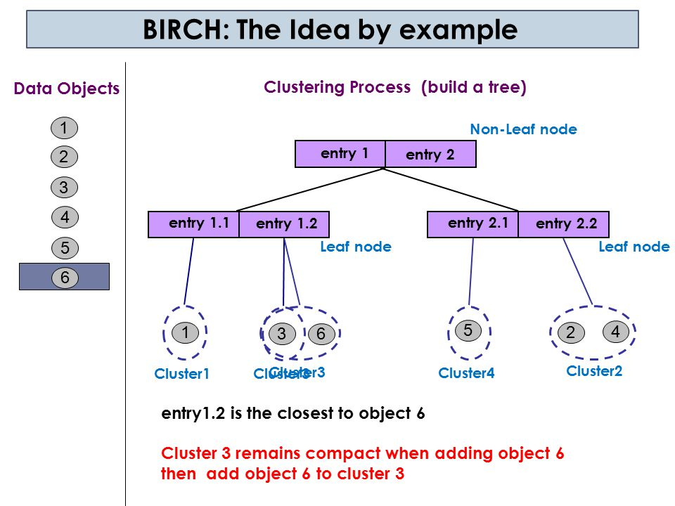 BIRCH: The Idea by example