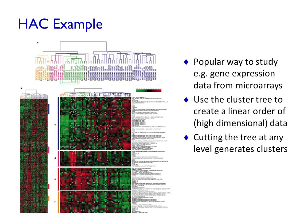 HAC Example Popular way to study e.g. gene expression data from microarrays.