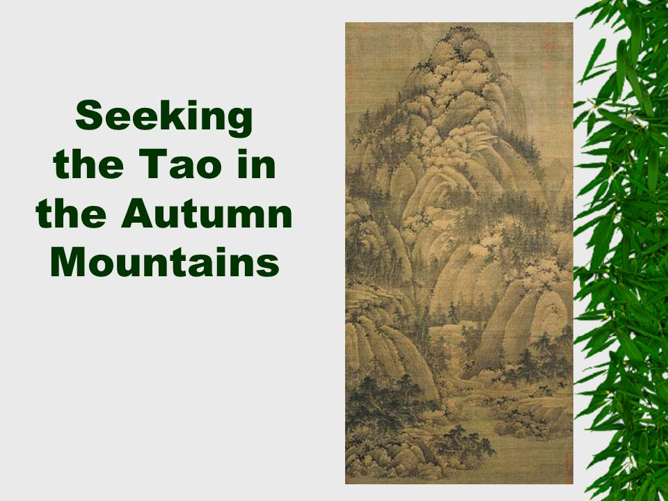 Seeking the Tao in the Autumn Mountains