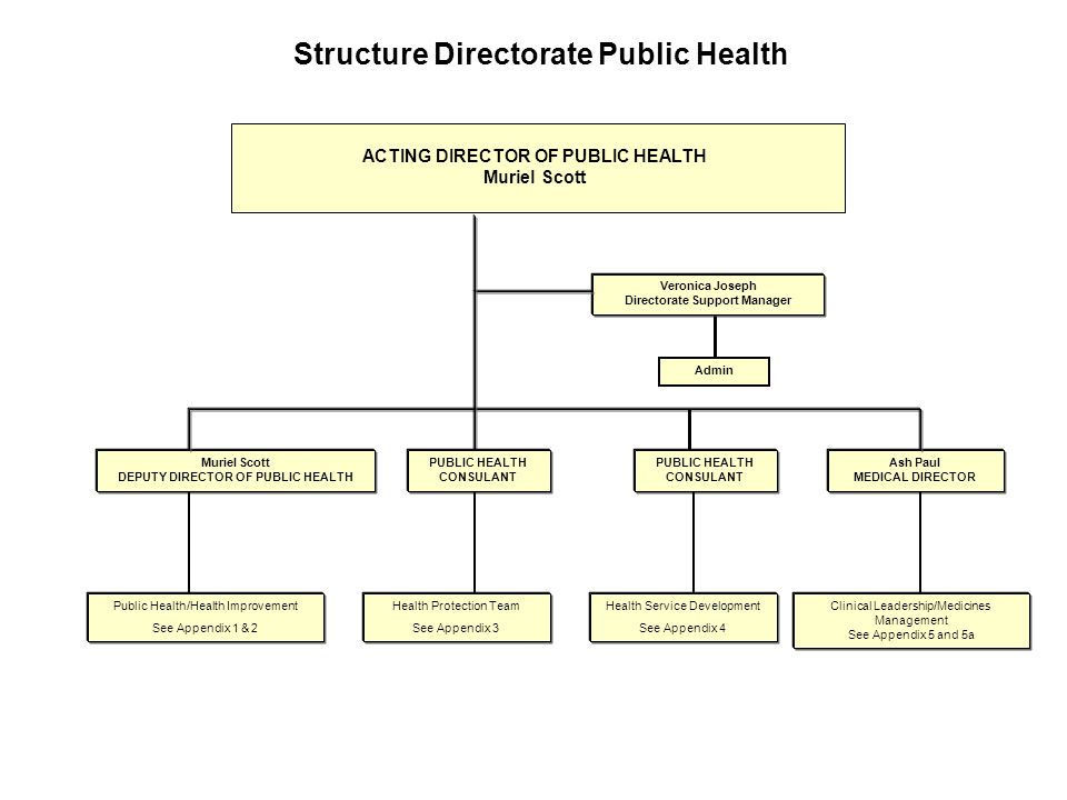 Structure Directorate Public Health