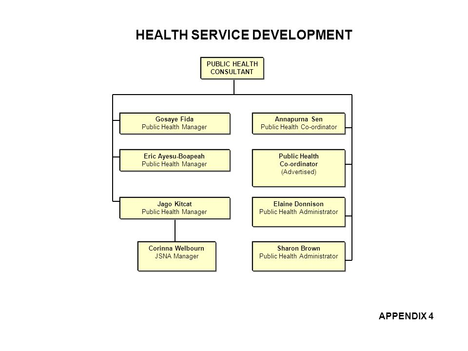 HEALTH SERVICE DEVELOPMENT PUBLIC HEALTH CONSULTANT