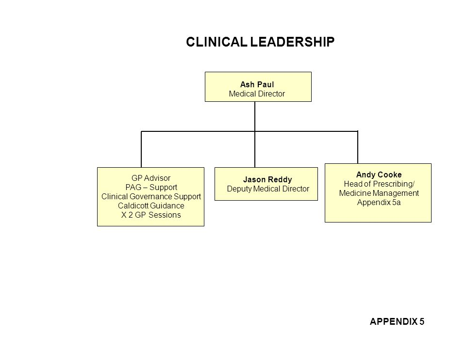 CLINICAL LEADERSHIP APPENDIX 5 Ash Paul Medical Director GP Advisor