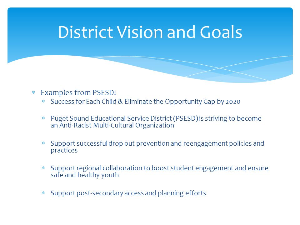 District Vision and Goals