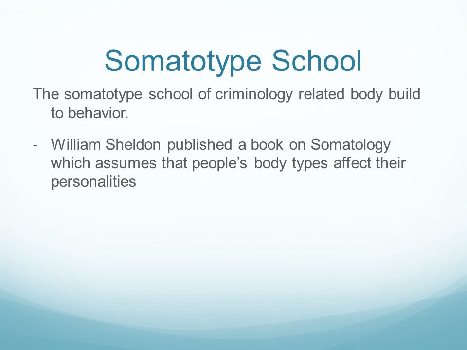 Somatotype School