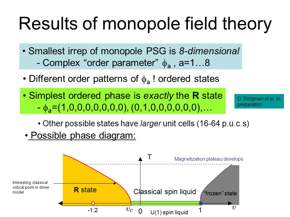 Results of monopole field theory
