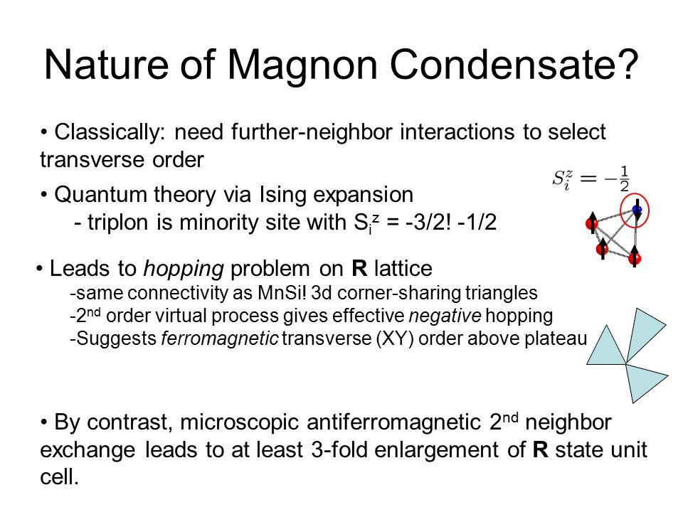 Nature of Magnon Condensate
