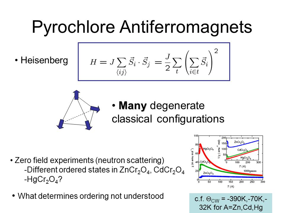Pyrochlore Antiferromagnets