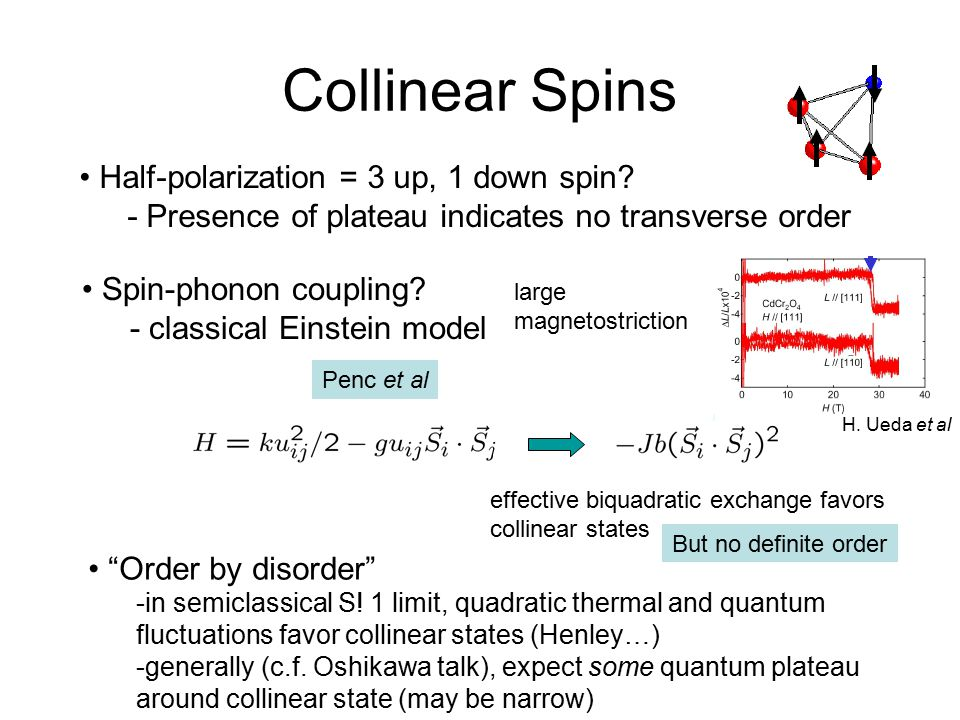 Collinear Spins Half-polarization = 3 up, 1 down spin