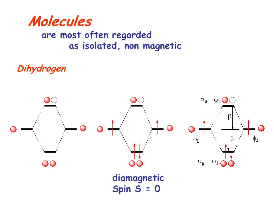 Molecules are most often regarded as isolated, non magnetic Dihydrogen diamagnetic Spin S = 0