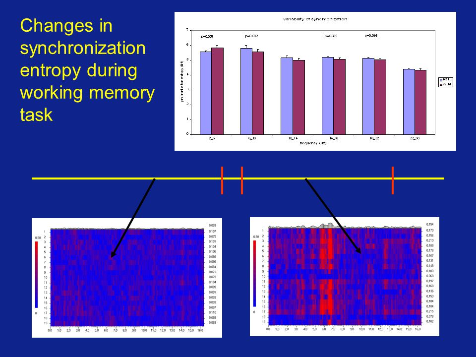Changes in synchronization entropy during working memory task