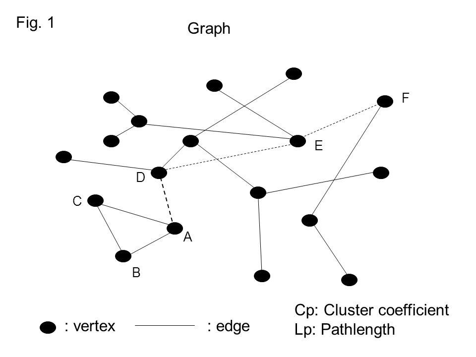Cp: Cluster coefficient Lp: Pathlength : vertex : edge