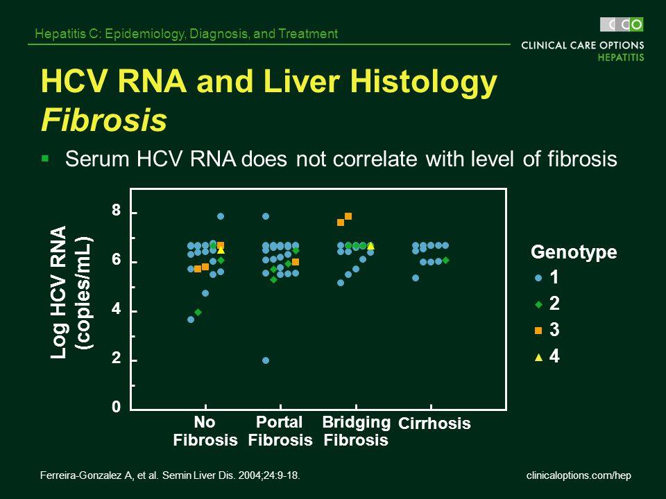HCV RNA and Liver Histology Fibrosis