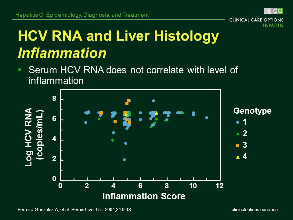 HCV RNA and Liver Histology Inflammation