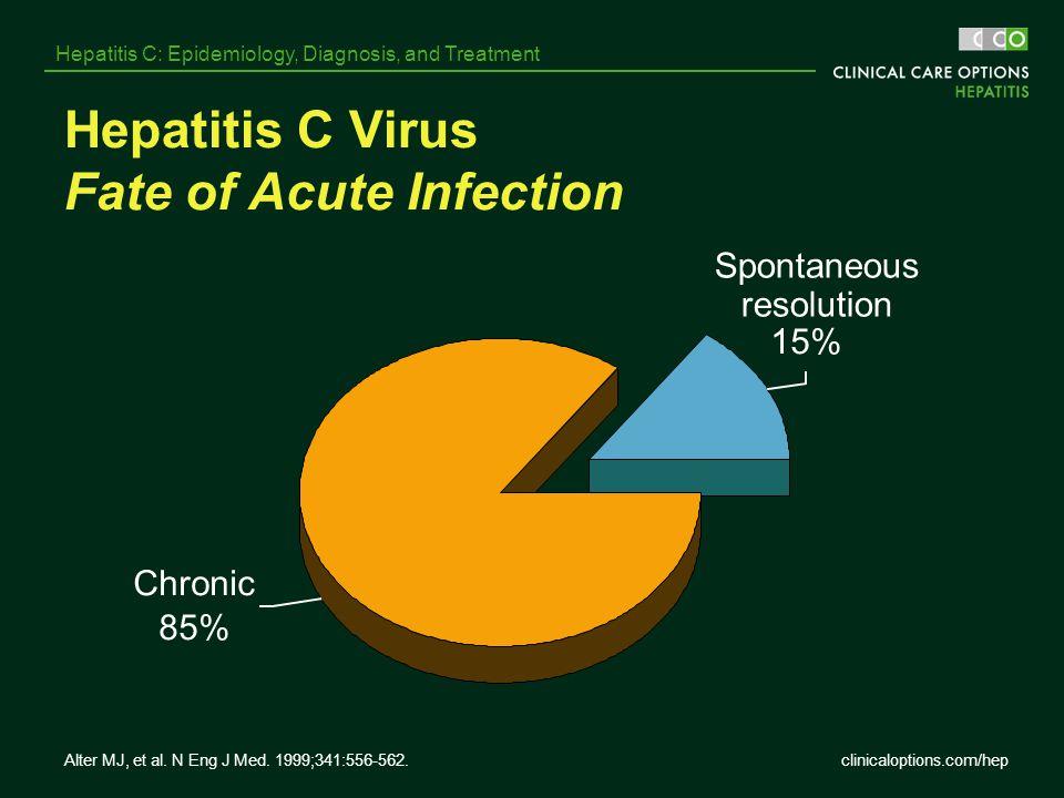 Hepatitis C Virus Fate of Acute Infection