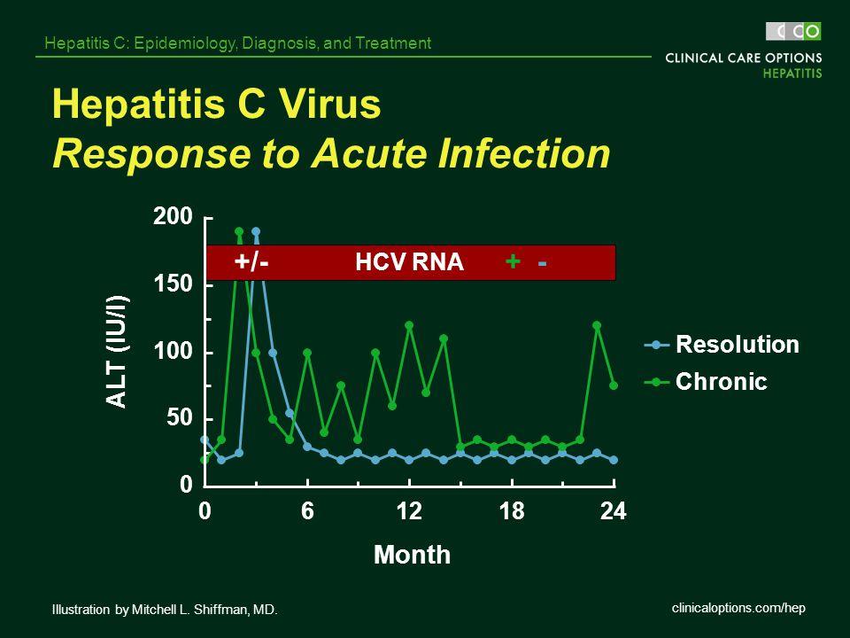 Hepatitis C Virus Response to Acute Infection