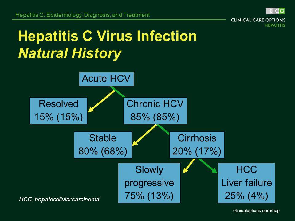 Hepatitis C Virus Infection Natural History