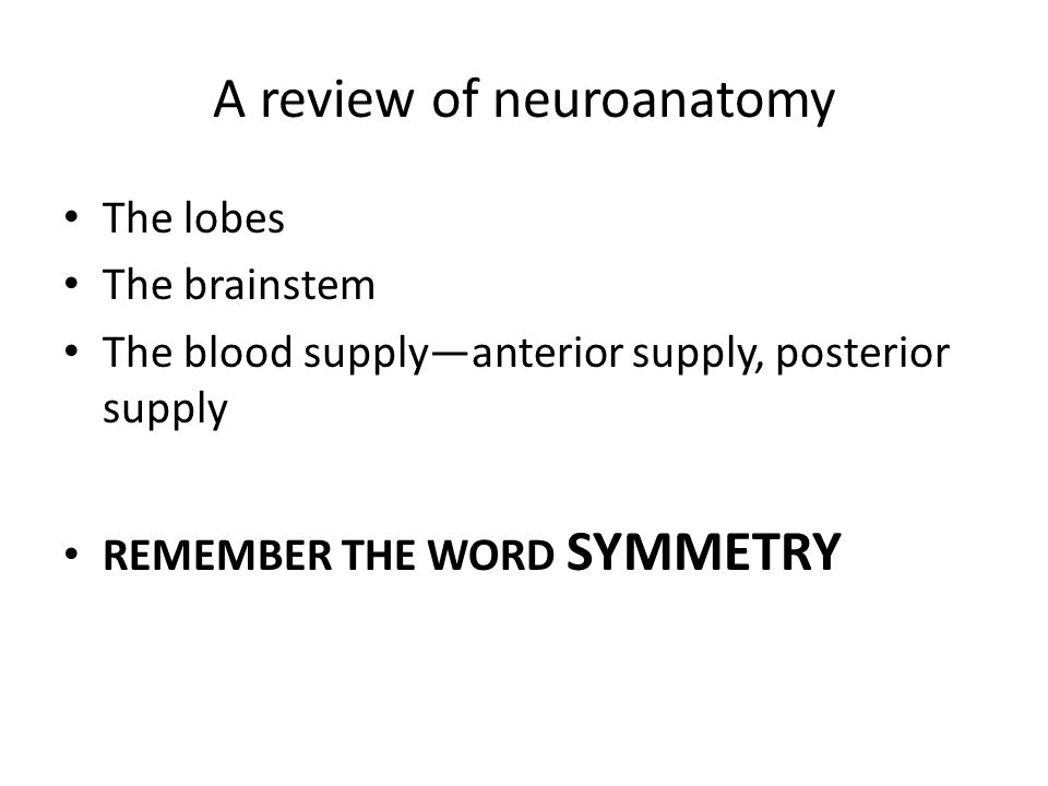 A review of neuroanatomy