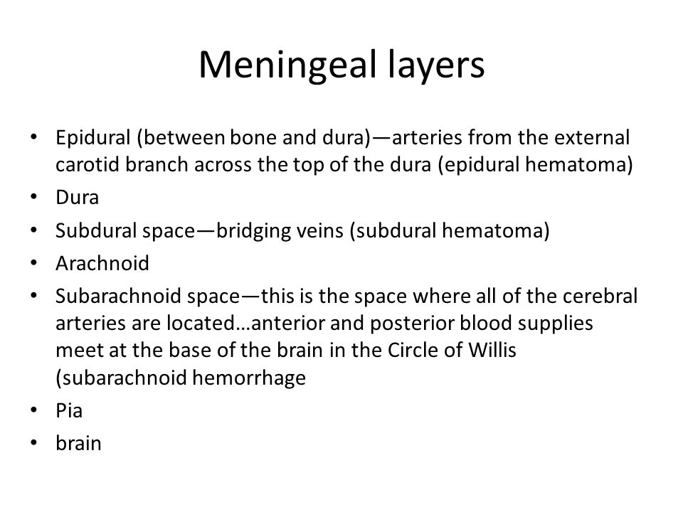 Meningeal layers Epidural (between bone and dura)—arteries from the external carotid branch across the top of the dura (epidural hematoma)