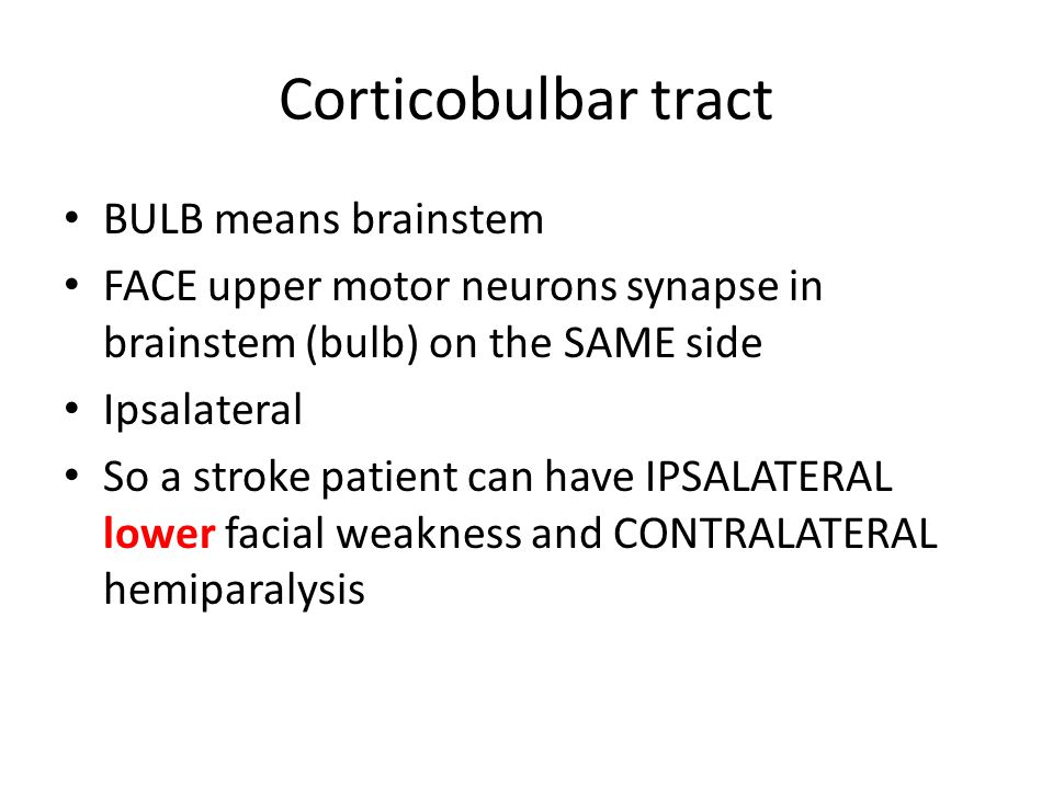 Corticobulbar tract BULB means brainstem