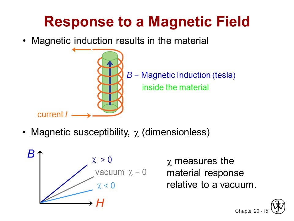 Response to a Magnetic Field