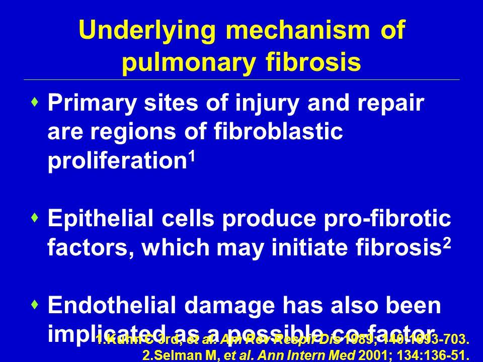 Underlying mechanism of pulmonary fibrosis