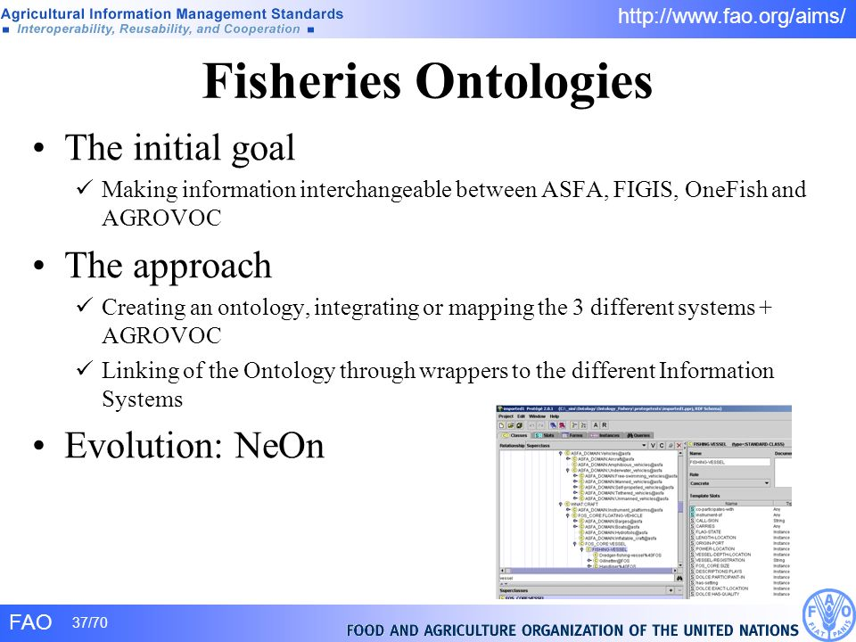 Fisheries Ontologies The initial goal The approach Evolution: NeOn
