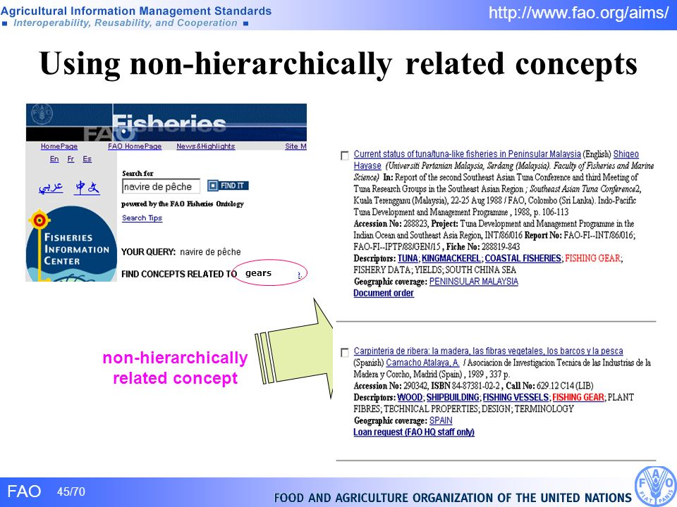 Using non-hierarchically related concepts