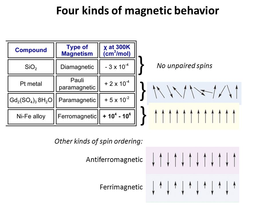 Four kinds of magnetic behavior