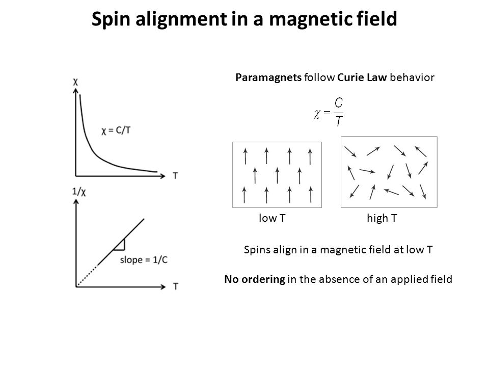 Spin alignment in a magnetic field