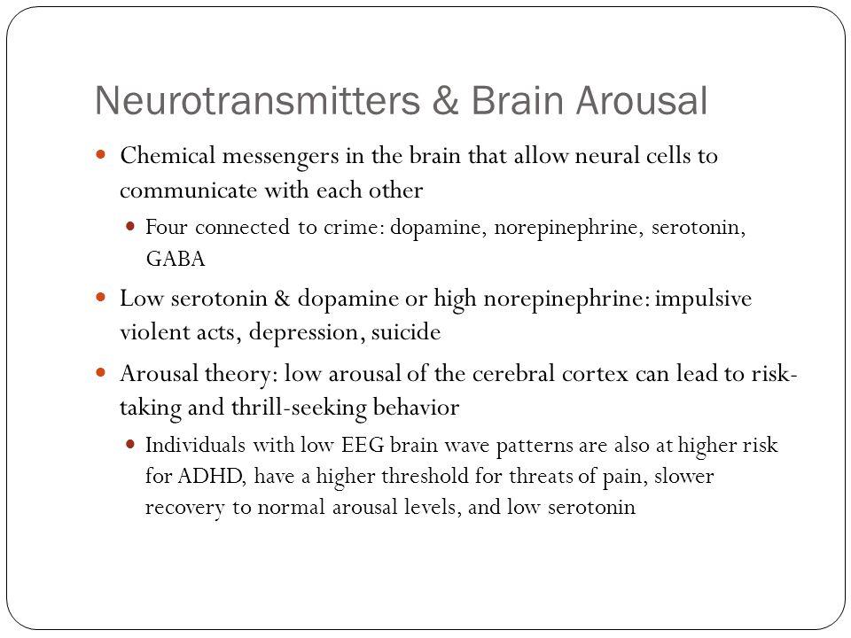 Neurotransmitters & Brain Arousal
