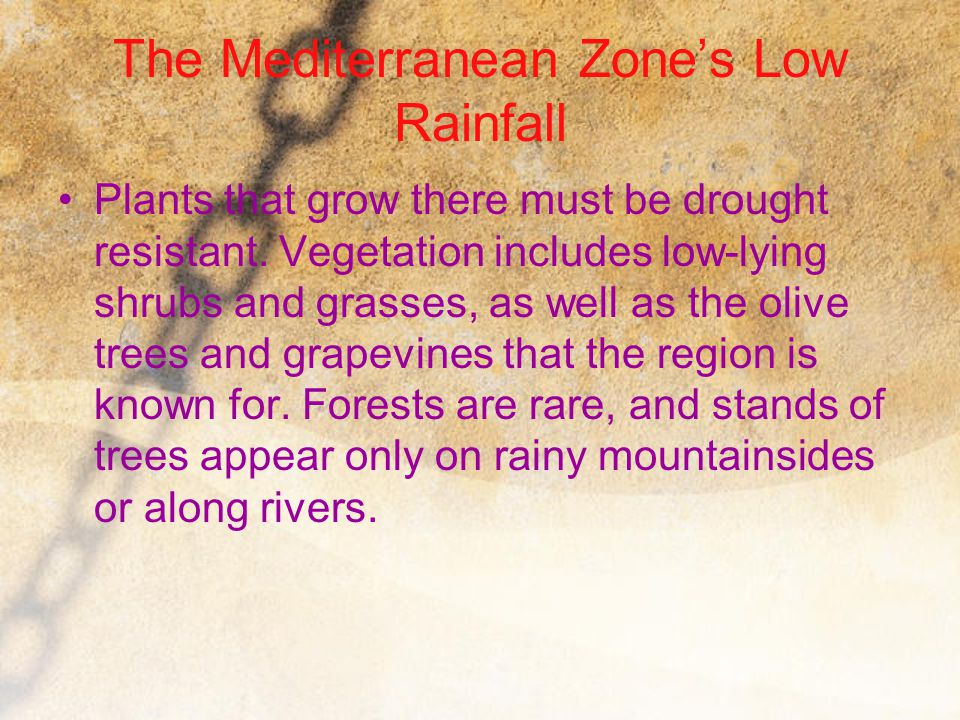 The Mediterranean Zone's Low Rainfall