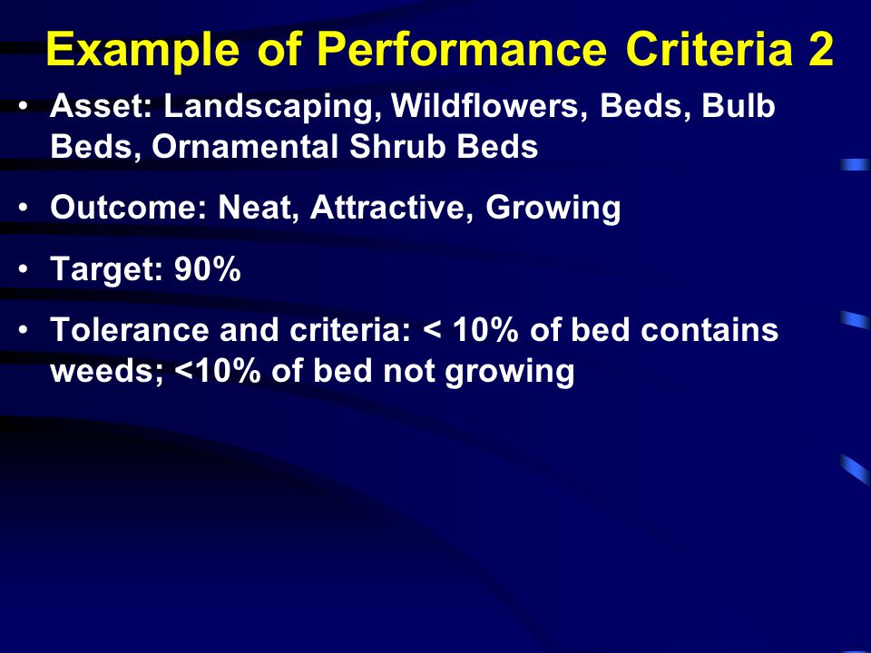 Example of Performance Criteria 2