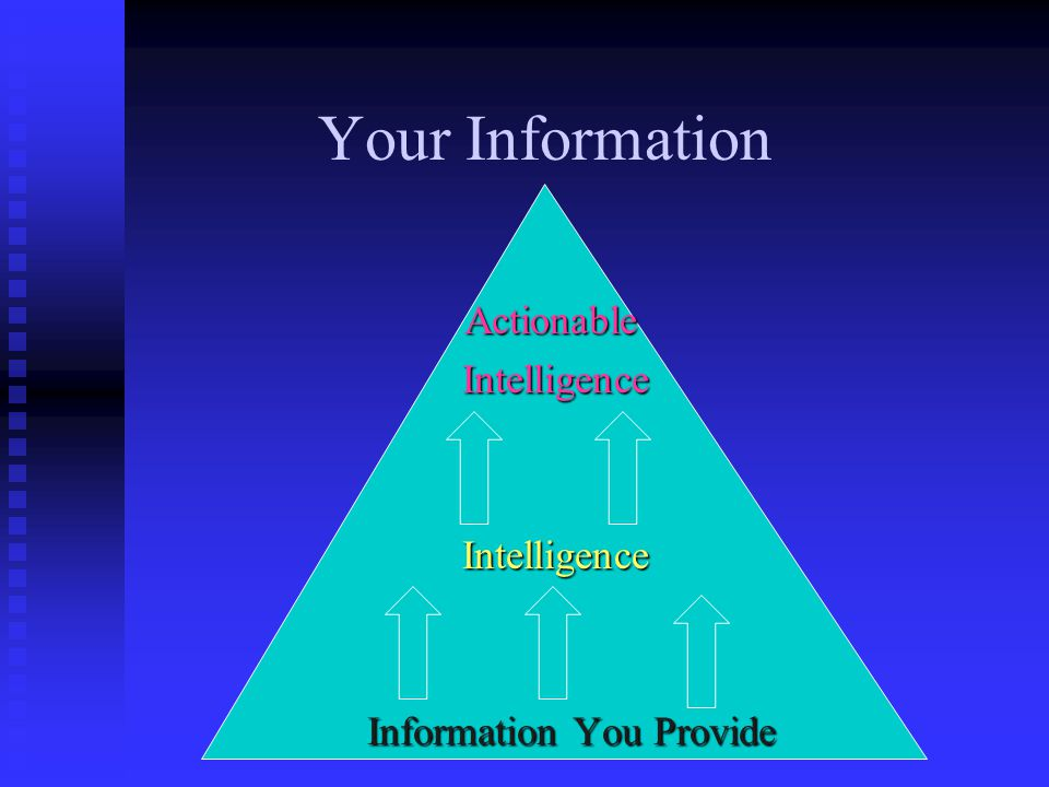 Information You Provide