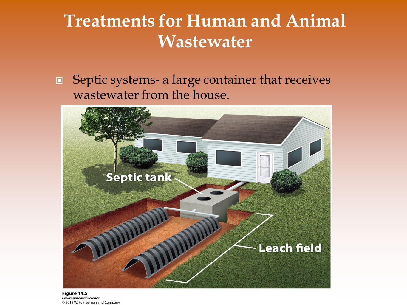 Treatments for Human and Animal Wastewater