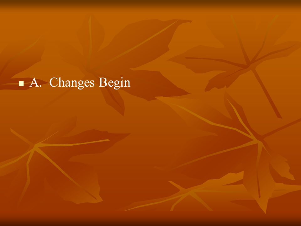 A. Changes Begin