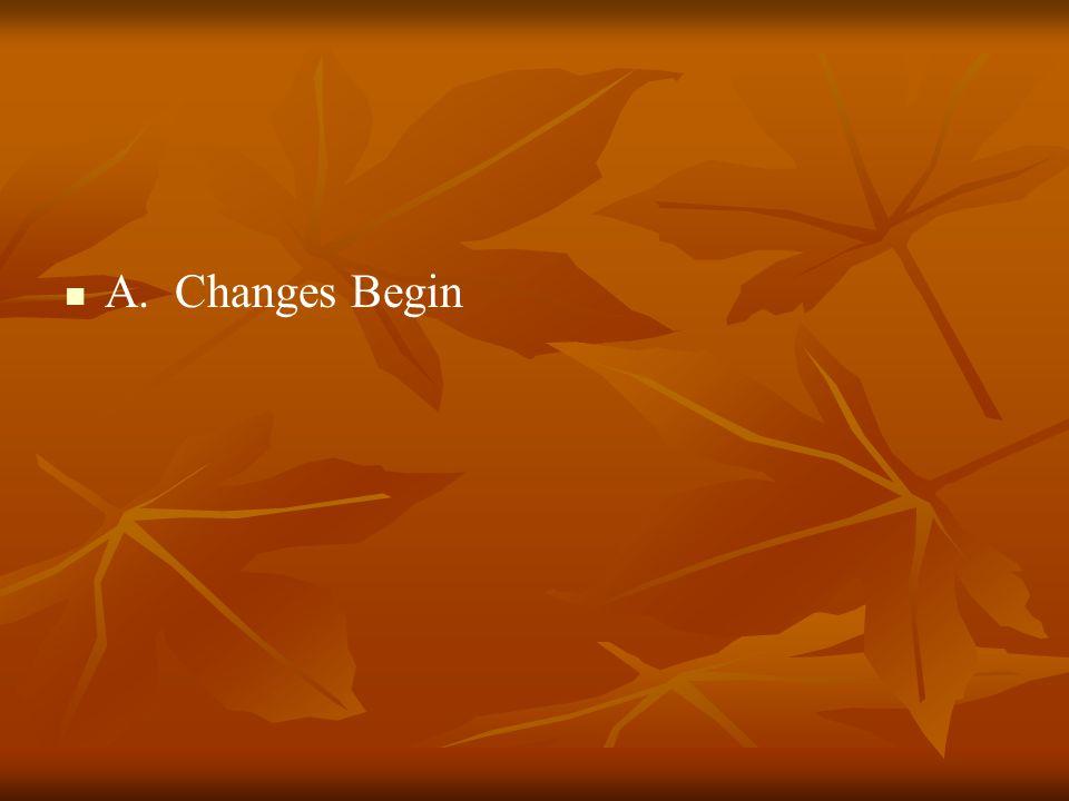 A. Changes Begin