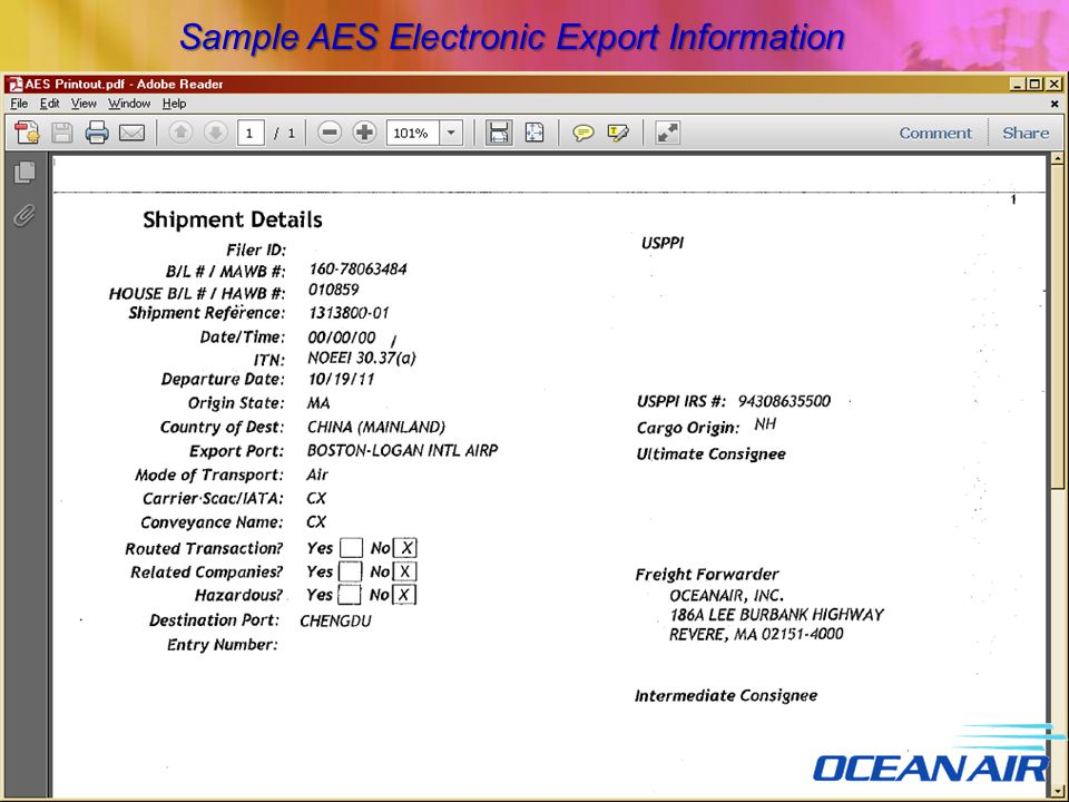 Sample AES Electronic Export Information