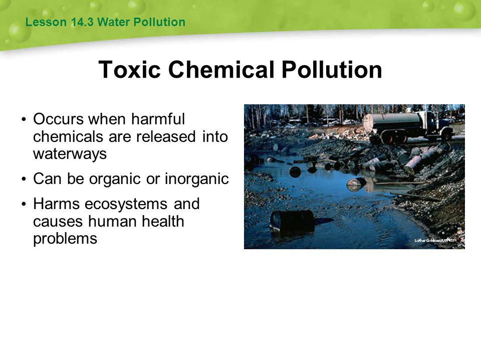 Toxic Chemical Pollution