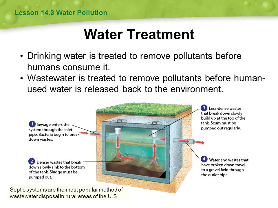 Lesson 14.3 Water Pollution