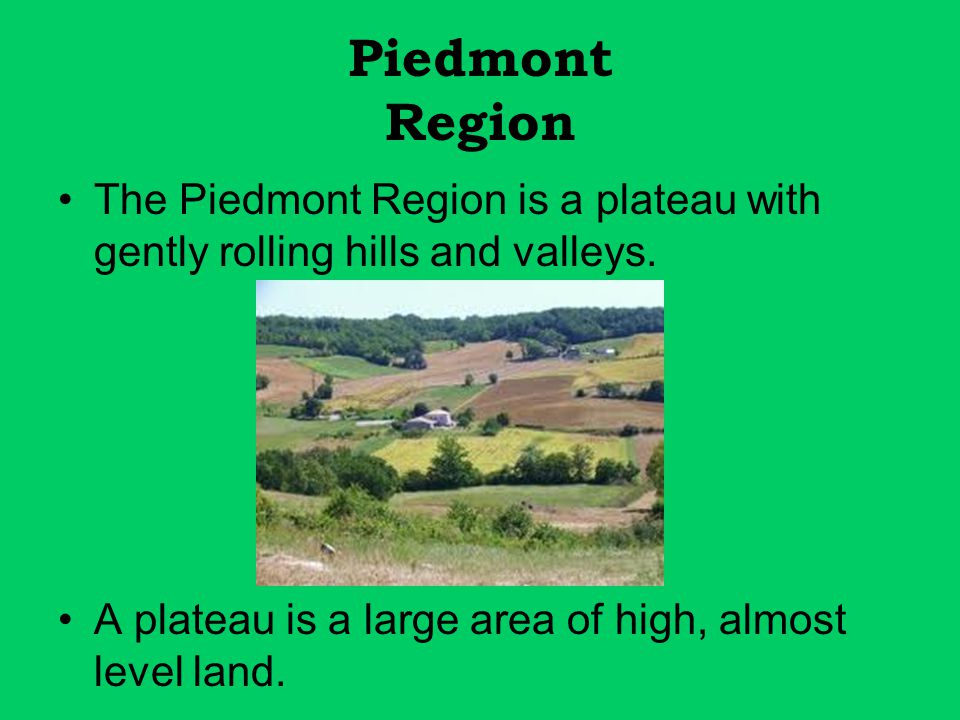 Piedmont Region The Piedmont Region is a plateau with gently rolling hills and valleys.
