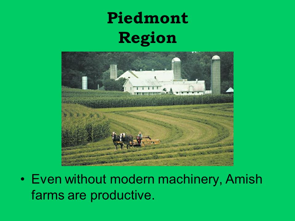 Piedmont Region Even without modern machinery, Amish farms are productive.