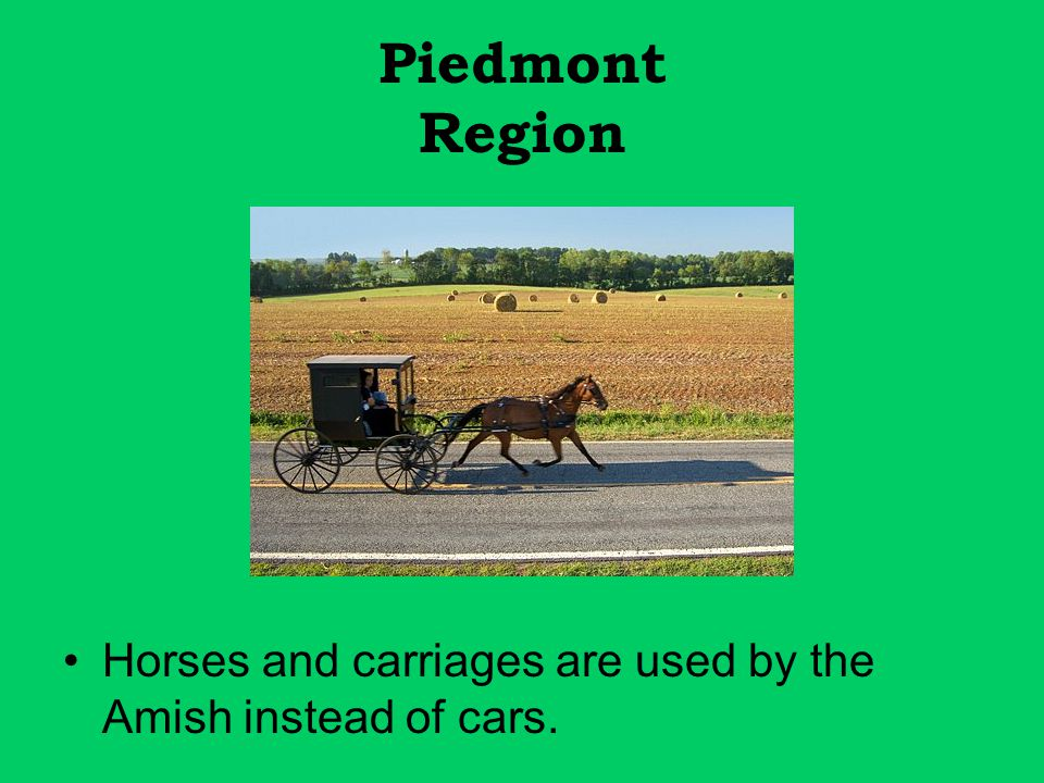 Piedmont Region Horses and carriages are used by the Amish instead of cars.