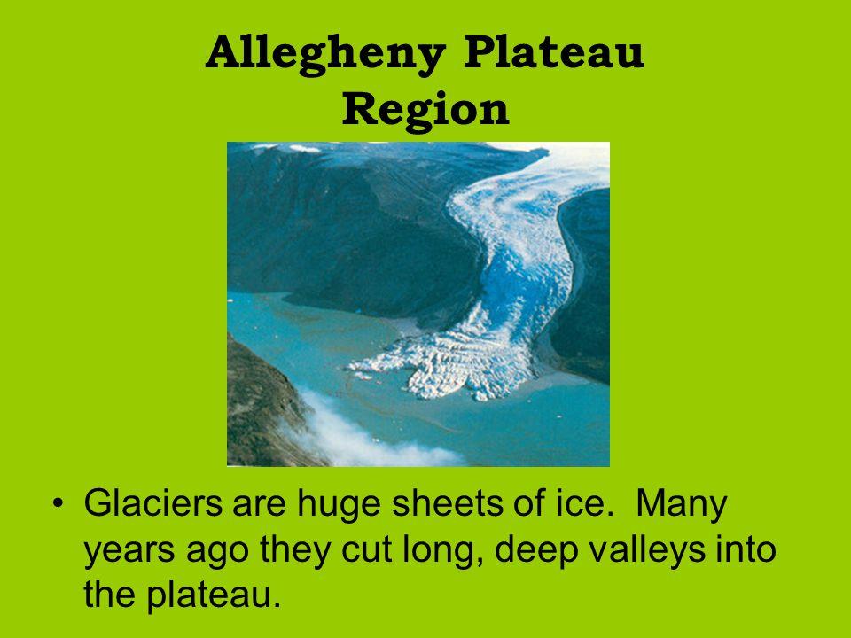 Allegheny Plateau Region