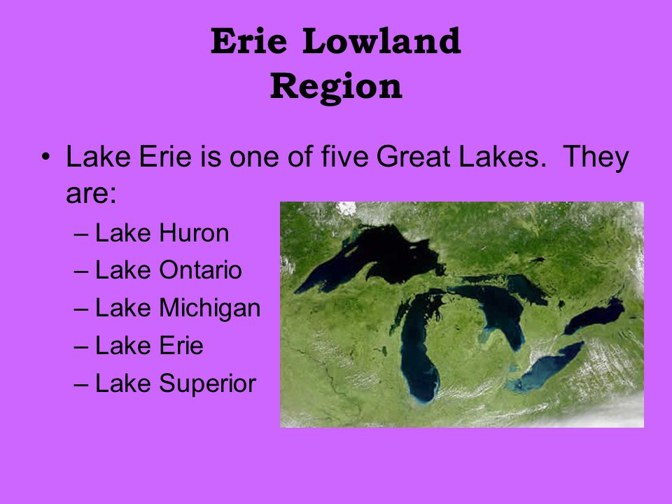 Erie Lowland Region Lake Erie is one of five Great Lakes. They are: