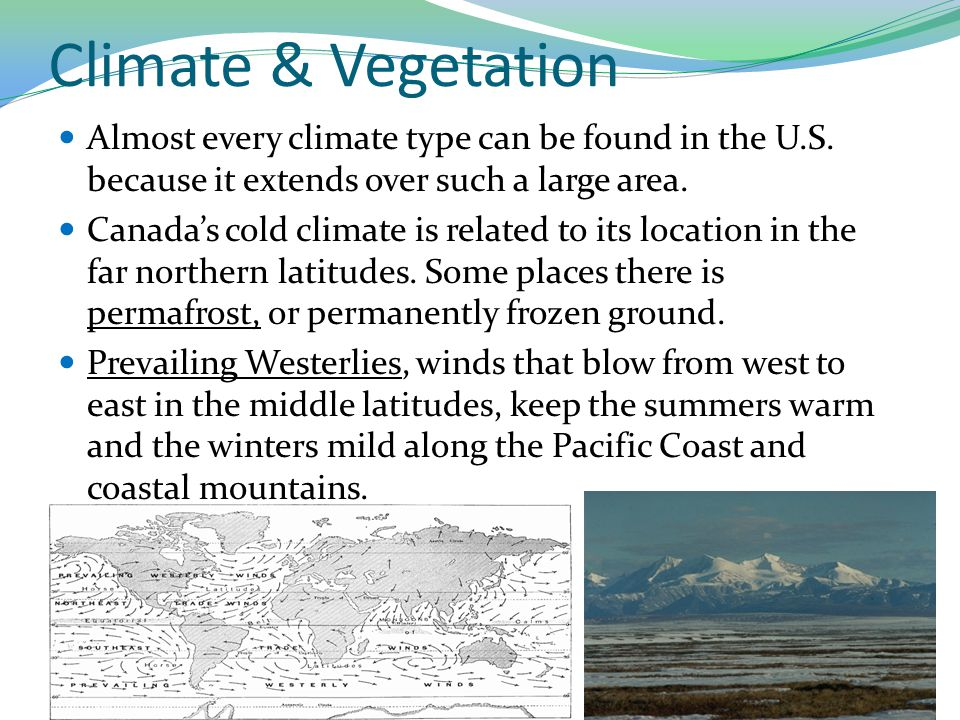 Climate & Vegetation Almost every climate type can be found in the U.S. because it extends over such a large area.