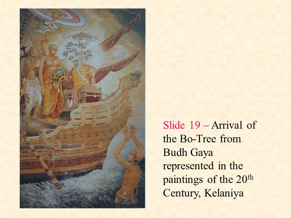 Slide 19 – Arrival of the Bo-Tree from