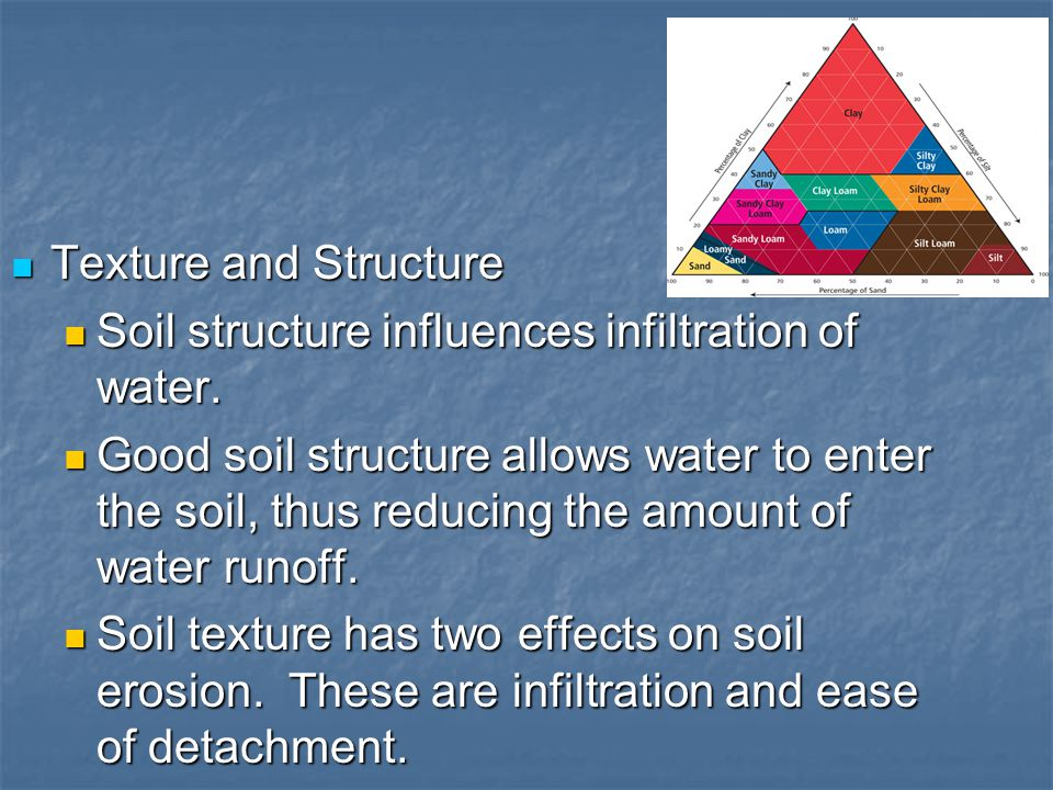 Texture and Structure Soil structure influences infiltration of water.
