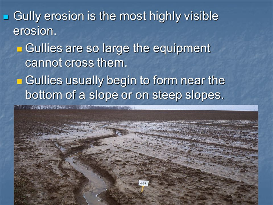 Gully erosion is the most highly visible erosion.