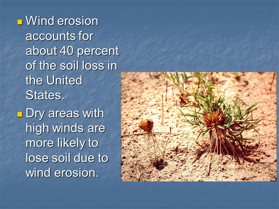 Wind erosion accounts for about 40 percent of the soil loss in the United States.